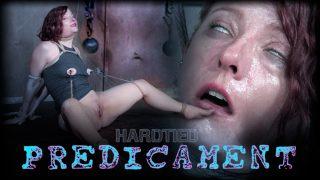 Predicament Hardtied.com – moviesxxx.cc
